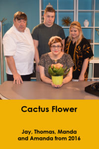 website-cactusflower