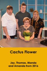 website-cactusflower